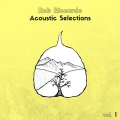 Acoustic Selections, Vol. 1
