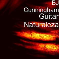Guitar Naturaleza