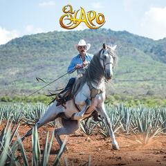 El Mago (Version Mariachi)