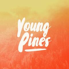 Young Pines