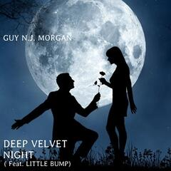 Deep Velvet Night (feat. Little Bump)