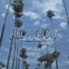 All I Know (feat. R.E. McFly & Plus)