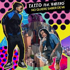 No Quiere Saber De MI (feat. VAKERO)
