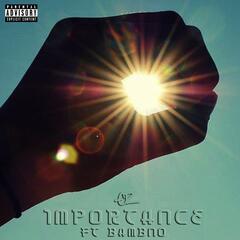 Importance (feat. Bambno)