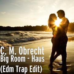 Big Room - Haus (Edm Trap Edit)