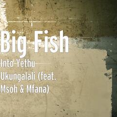 Into Yethu Ukungalali (feat. Msoh & Mfana)