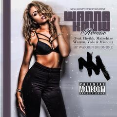 Wanna Know Remix (feat. Cheikh, Malachiae Warren, Vedo & Mishon)