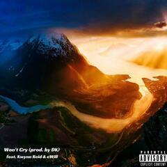 Won't Cry (feat. Kwynn Reid & eWill)