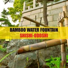 Bamboo Water Fountain Shishi-Odoshi