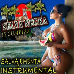 15 Cumbias Salvajemente Instrumental