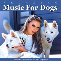 Relaxing Music for Dogs, Calm Pet Relaxation and the Best Dog Music