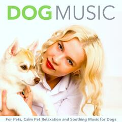 Dog Music for Pets, Calm Pet Relaxation and Soothing Music for Dogs