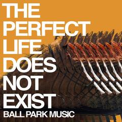 The Perfect Life Does Not Exist