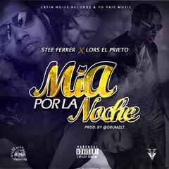 Mía Por La Noche (feat. Stee Ferer)