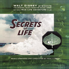 "Walt Disney Presents The Original Music from the Sound Track of his True-Life Adventure Film ""Secrets of Life"""