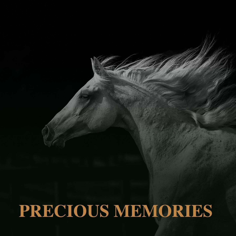 Listen Free to Jim Reeves - Precious Memories Radio on iHeartRadio   iHeartRadio