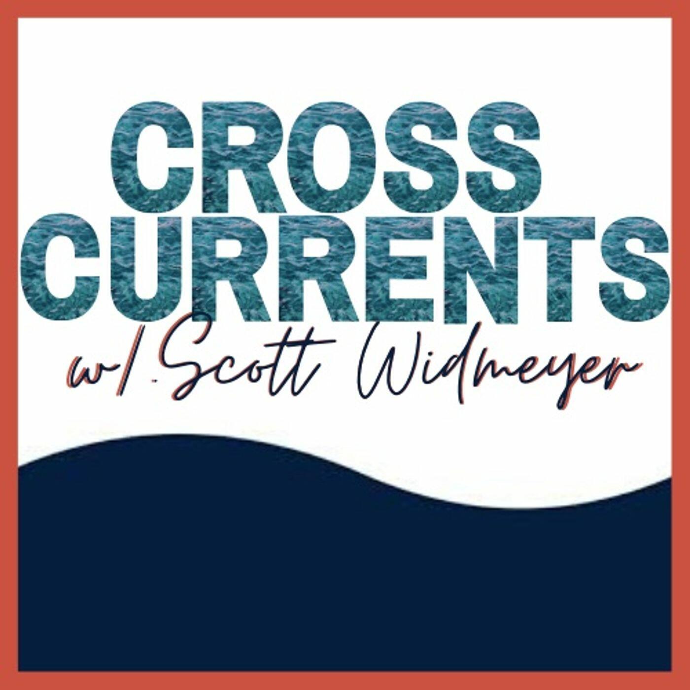 Listen to AFT's Weingarten: Teacher Activism, Public Support--'Hope in Darkness' | Cross Currents with Scott Widmeyer | Podcasts
