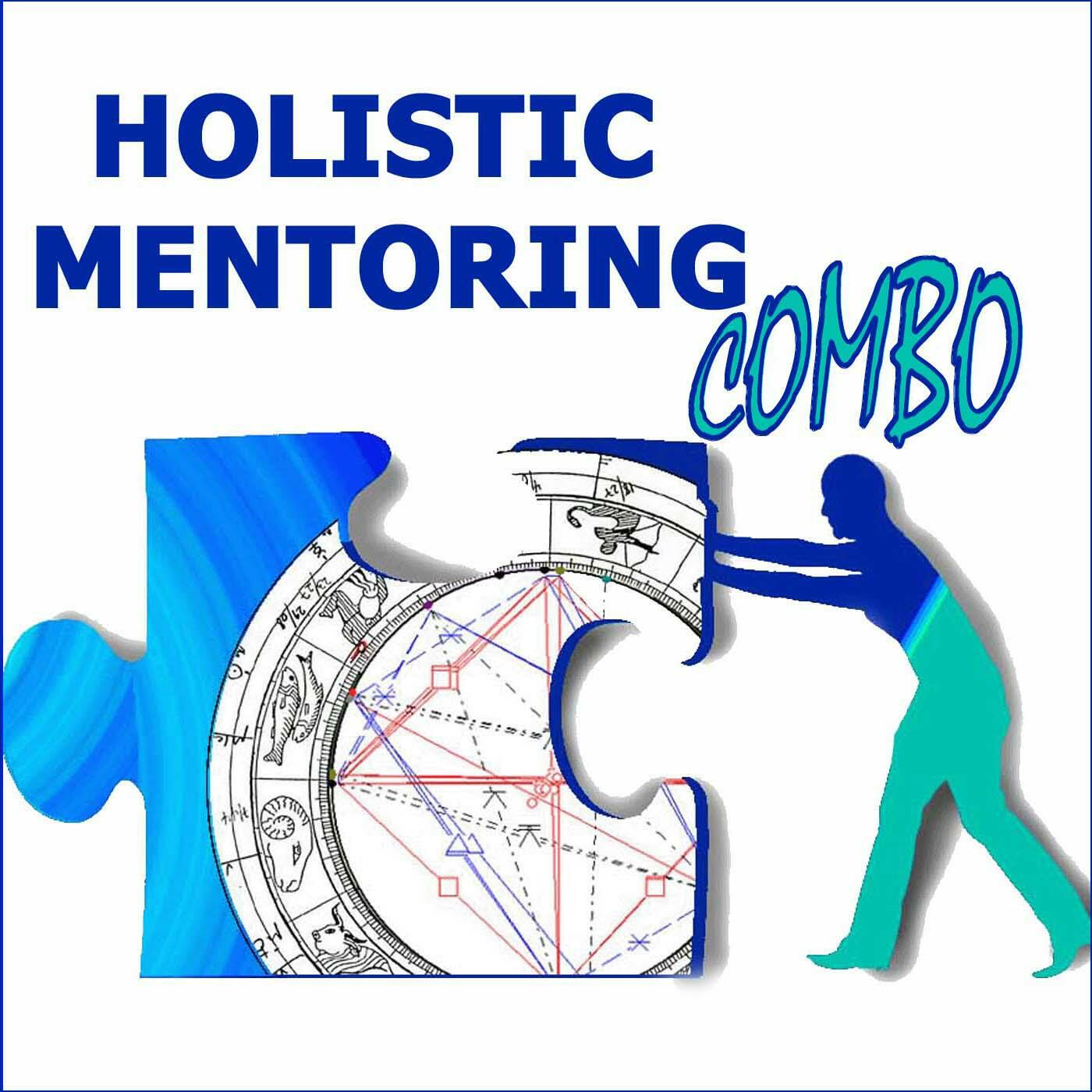 holistic mentoring combo transformational stories highlighting holistic mentoring combo transformational stories highlighting the engineering of joyful lives and successful careers podcast stream listen