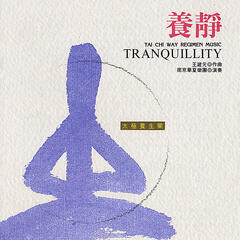 Tai Chi Way Regimen Music: Tranquility