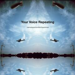 Your Voice Repeating