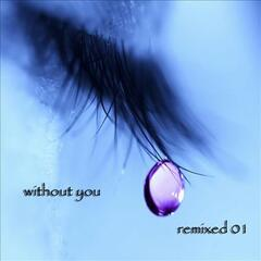Without You: remixed 01