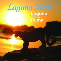 Laguna The Puma