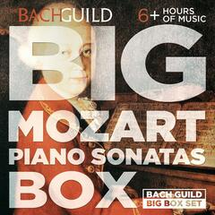 Big Mozart Piano Sonatas Box