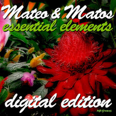 Essential Elements (Digital Edition)