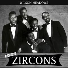 Presents the Zircons album art