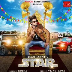 Star (feat. Vijay Bawa) album art