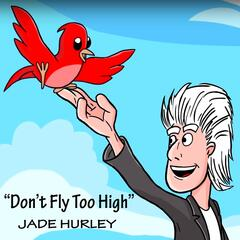 Don't Fly Too High album art