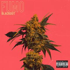 Fumo album art
