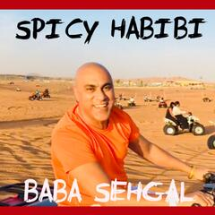 Spicy Habibi album art