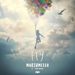 Fly album art
