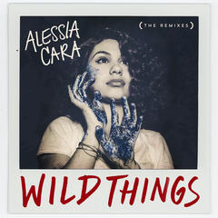 Wild Things (The Remixes)