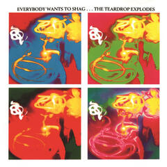 Everybody Wants To Shag... The Teardrop Explodes album art
