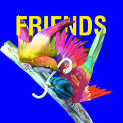 Friends album art