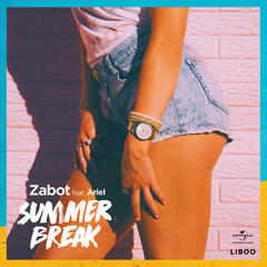 Summer Break album art