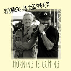 Morning Is Coming album art