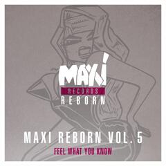 Maxi Reborn Vol. 5: Feel What You Know