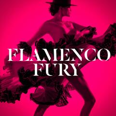 Flamenco Fury