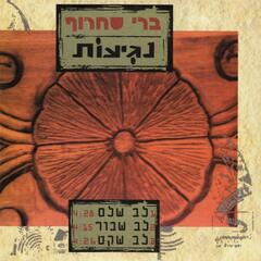 Lev Shalem album art