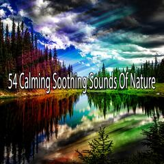 54 Calming Soothing Sounds Of Nature album art