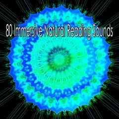 80 Immersive Natural Reading Sounds album art