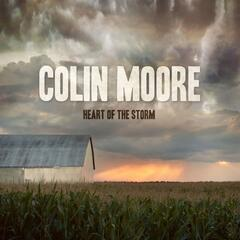 Heart of the Storm album art