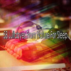 58 Lullabyes From Nature For Sleep album art