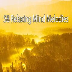 58 Relaxing Mind Melodies