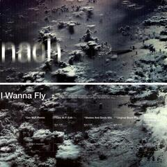 I Wanna Fly album art