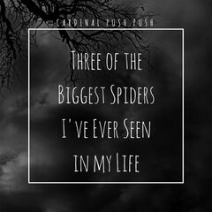 Three of the Biggest Spiders I've Ever Seen in My Life album art