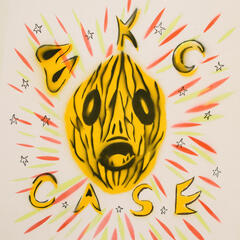 Case album art